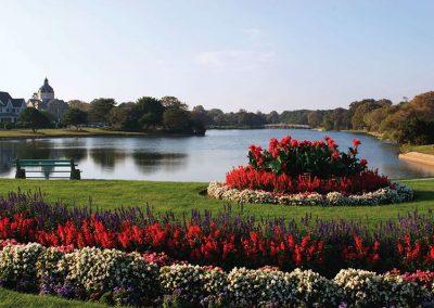 Divine Park